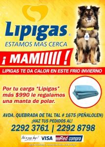 lipi5